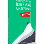 B2B-Email-Marketing-Guide